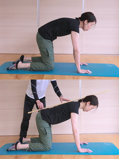 正しい姿勢の確認方法